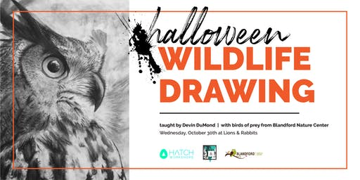 Halloween Wildlife Drawing