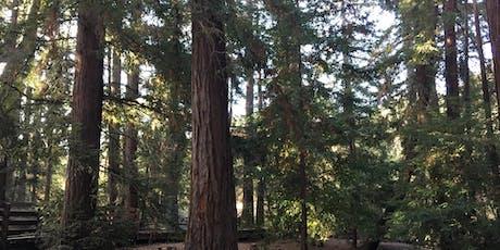 Sorrel Saturdays at Redwood Grove Nature Preserve tickets