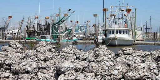 Oyster Shell Bagging - Coastal Louisiana Reef Restoration - Thursday, December 19 - Dartmouth and Public
