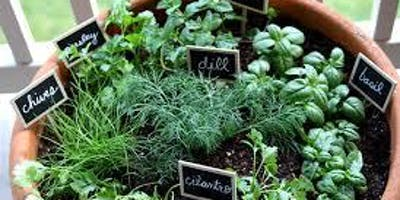 Herb Gardening for All - SOLD OUT