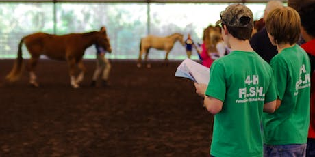 2019 Florida 4-H/FFA Horse Judging School tickets