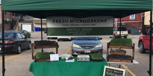 Fresh Cut Microgreens! Grateful Greens Visits the Kaukauna Farmers Market
