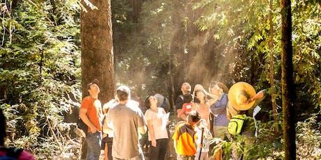 Family Nature Day at Huddart Park - Fall Festivities! tickets