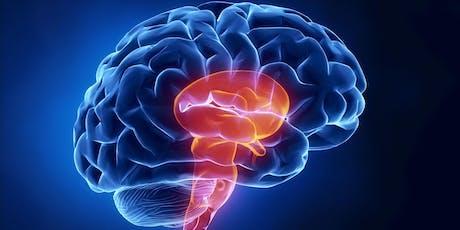 Curso: Neurocomunicação e Neuroliderança tickets