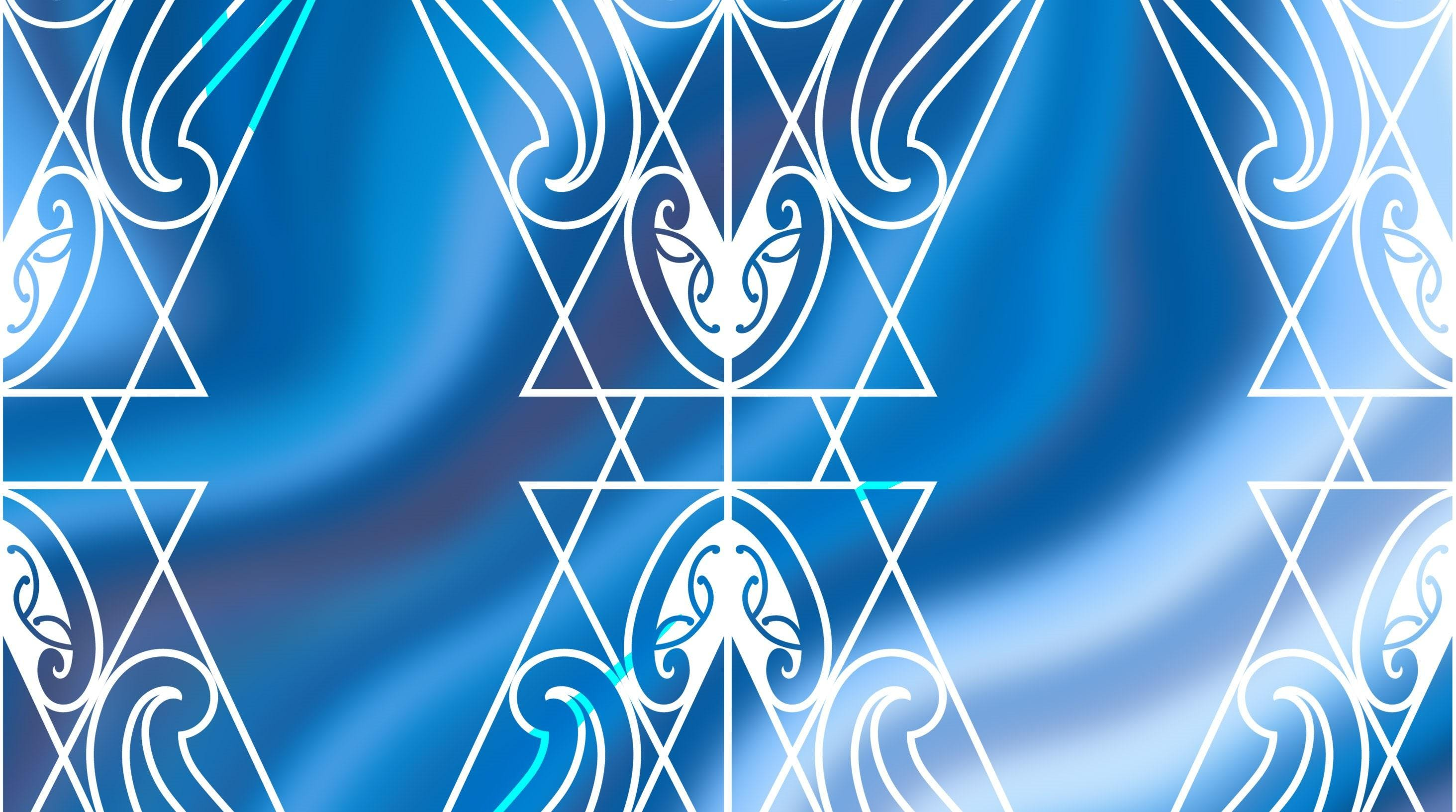 Hui Maumahara Finding the healer within Hinewirangi Kohu Morgan - Waikato