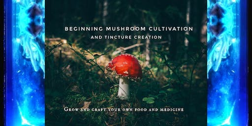 Mushroom Cultivation and Tincture Creation