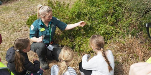 Junior Rangers Flora Explorer - Solomon Gully Nature Conservation Reserve