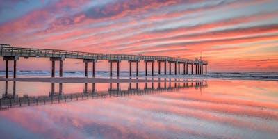 Beaches & Birds in St. Augustine