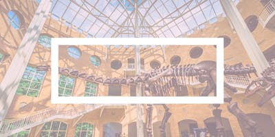The Big Quiet in ATL: A Mass Meditation at the Fernbank Museum