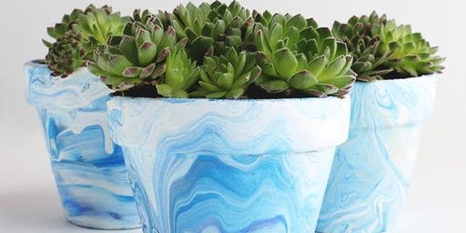 Succulents + Cacti Marbled Planter - Jr. Garden Club