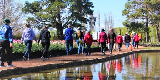 Heart Foundation Early Morning Floriade Walks