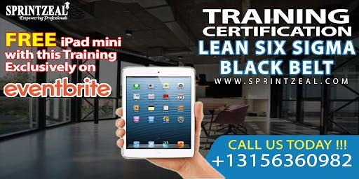 Lean Six Sigma Black Belt Certification Training in Sydney