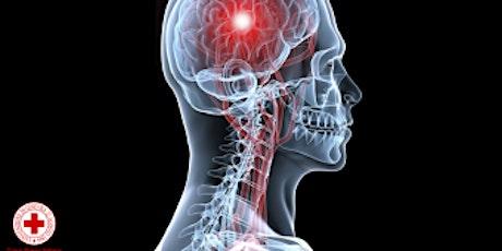 """Corso """"Sistema Nervoso e Apparato Locomotore: come è fatto, disturbi, traumi cranici e vertebrali, lesioni muscolo scheletriche e traumi osteoarticolari"""" biglietti"""