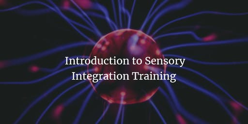 Introduction to Sensory Integration Course