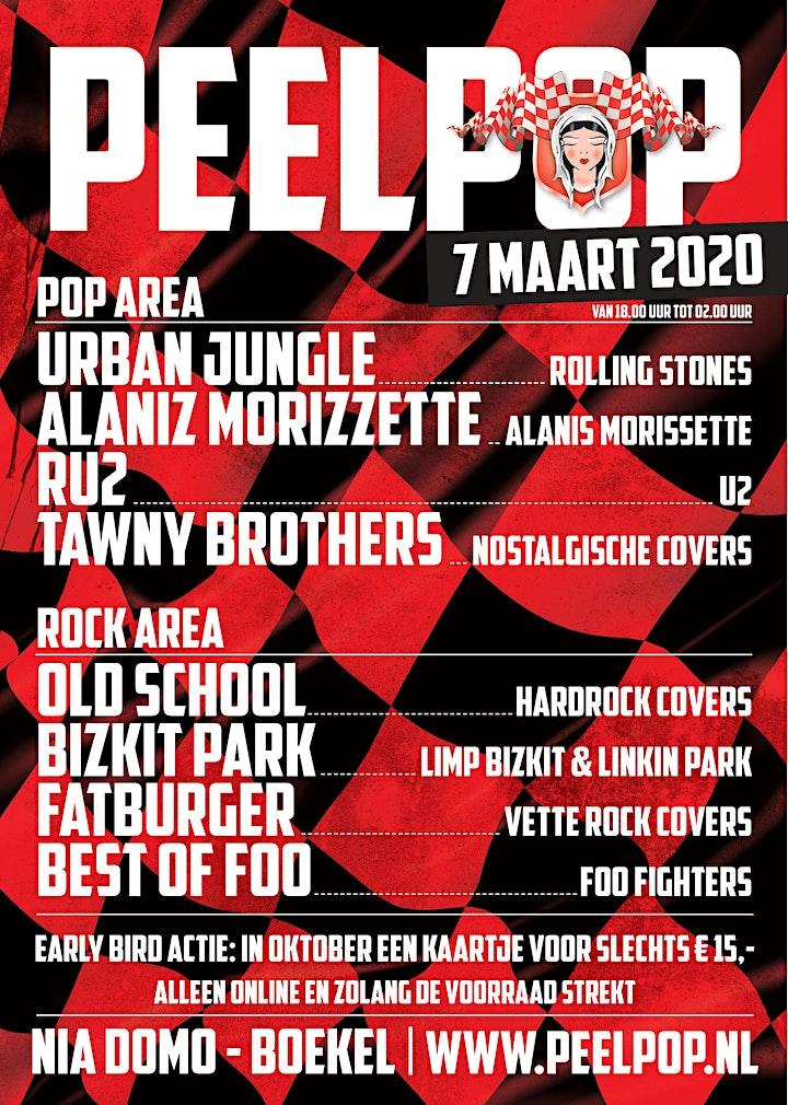 Afbeelding van Peelpop 2020