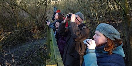 Weekend Wildwatch: Brilliant birds tickets