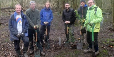 Eco-Active Day: Tree planting tickets