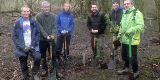 Eco-Active Day: Tree planting