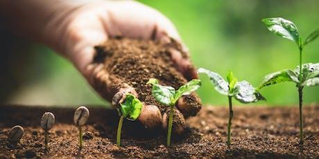 Rewriting nature versus nurture tickets