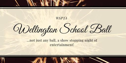 "Wellington School PTA ""Not Just Any"" Ball"