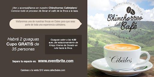 "Tour: ""Chinchorreo del Café"""