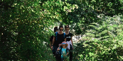 Wales Valleys Walking Festival - Flora, Fauna and Fungi