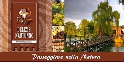Passeggiata naturalistica alla scoperta del territorio - Quinto di Treviso