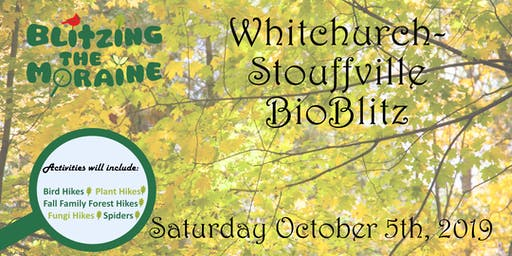 Blitzing the Moraine 2019! Whitchurch-Stouffville BioBlitz