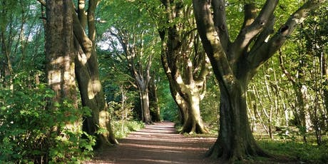 Wonder Walk and Talk in Stanmer Park with Creative Coach Julia Fry tickets