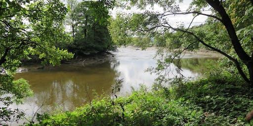 Wanderings & Windings: Forth Inches Riverside Wander