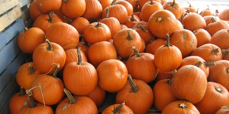 Pumpkin Decorating Contest tickets