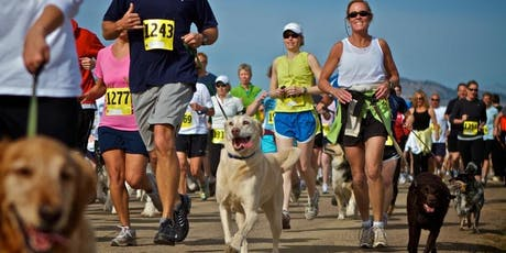 Doggy Fun Run tickets