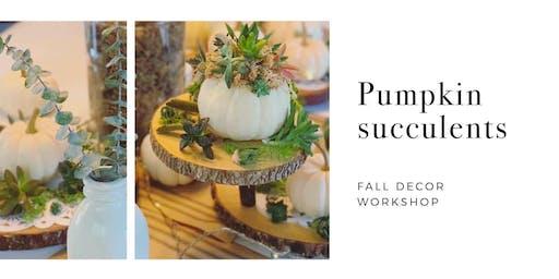 Pumpkin Succulent Making Workshop