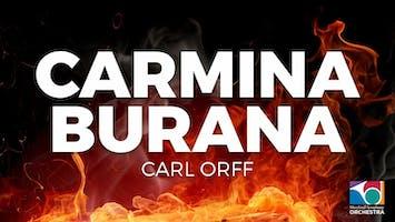 """Maryland Symphony Orchestra: """"Carmina Burana"""""""