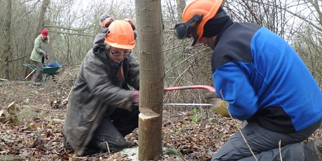 Eco-Active Day: Woodland management tickets