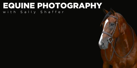Equine Photography with Sally Shaffer and Midwest Photo! tickets