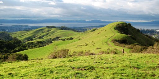 East Bay: Wildcat Canyon Wander