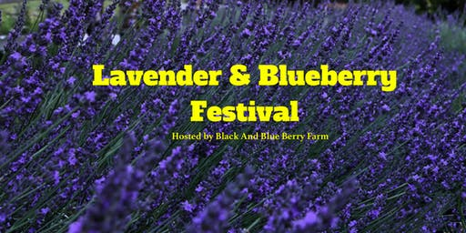Lavender and Blueberry Festival Second Saturday