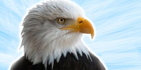 Colored Pencil Drawing Class - Bald Eagle tickets