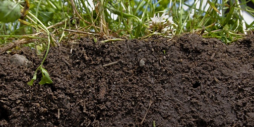 2nd Wednesday Lecture: Building a Culture of Soil Keepers