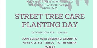 Planting Day:  Street Treebeds on E. 177th st