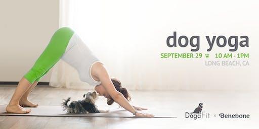 DogaFit & Brunch - Dog Yoga & Mimosa Brunch