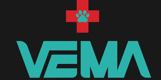 VEMA Indiegogo Launch Party