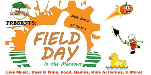 Field Day in the Meadows