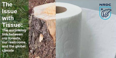 The Issue with Tissue: The link between forests, the climate, and tissue tickets