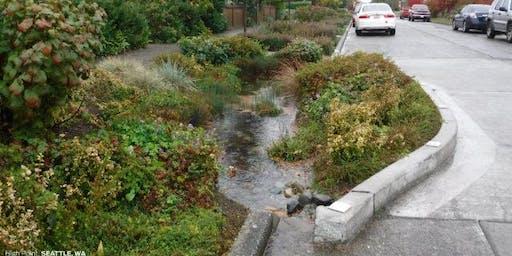 Stormwater Practice Design, Installation and Maintenance