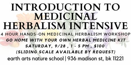 introduction to medicinal herbalism | 4 hour intensive tickets