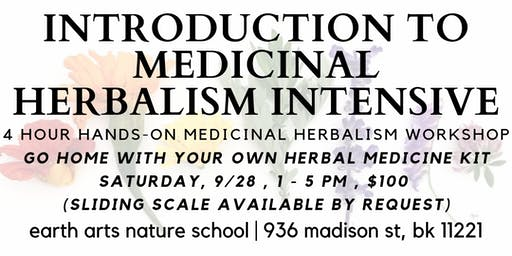 introduction to medicinal herbalism | 4 hour intensive