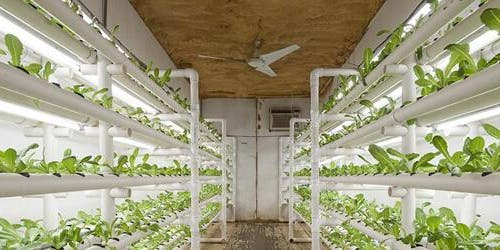 Container Farm Collaboration Dinner