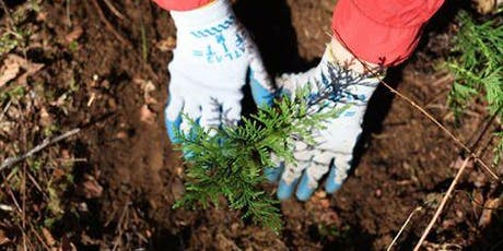 Help Plant Trees at North Green River Park  tickets